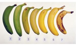 Koju od ovih banana bi pojeo? Tvoje zdravlje zavisi od odgovora