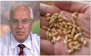 4 SPOONS DAILY AND CANCER PULLS OFF: Famous Bulgarian Scientist Reveals Most Powerful Natural Cure (RECIPE)