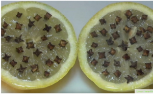 Limun i karanfilić u borbi protiv komaraca
