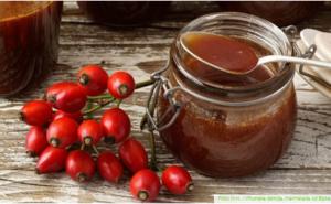 Recept za najbolju marmeladu od šipka!